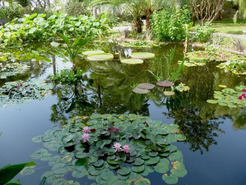 les-journees-mediterraneennes-du-jardin-a-menton