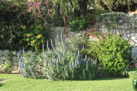 Les Jardins de la Bouscarella à Chateauneuf de Grasse